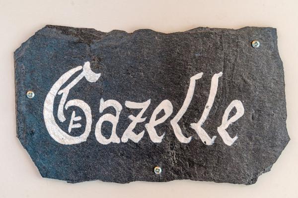gazelle-1F2C1EB4D-6148-42A2-8F91-D370FE0E60B5.jpg